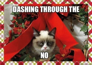 Grumpy Cat does not do Christmas Cards